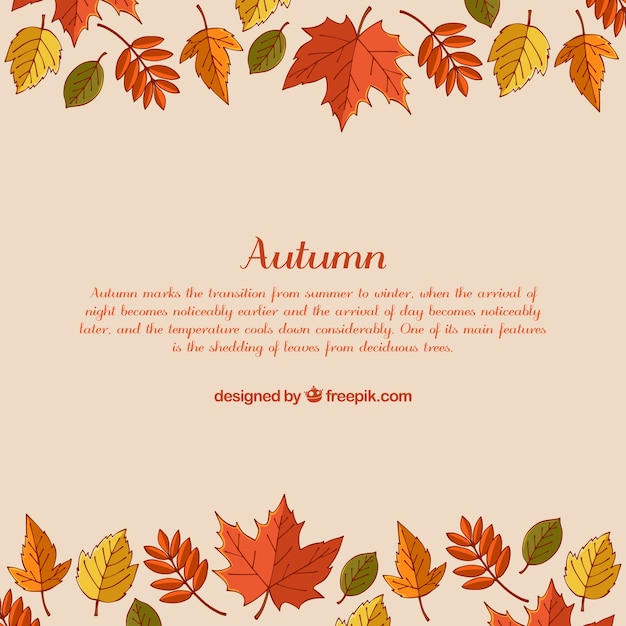 Colorful autumn background with hand drawn leaves