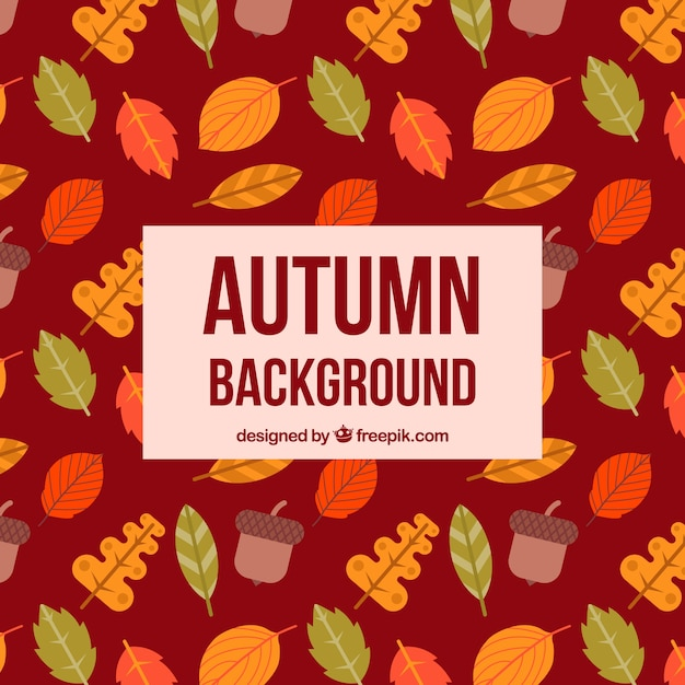 Colorful autumn background Free Vector
