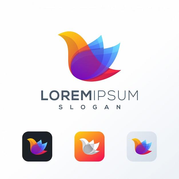 Colorful bird logo design Premium Vector