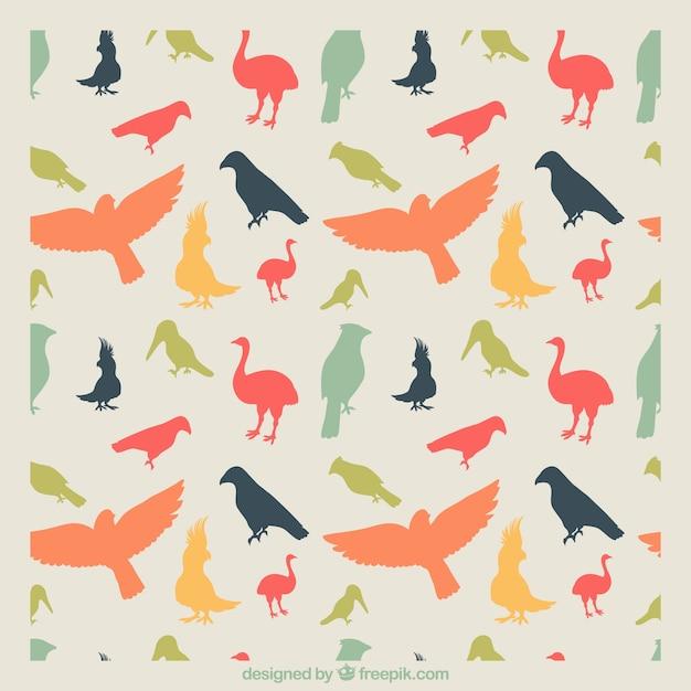 Colorful bird pattern