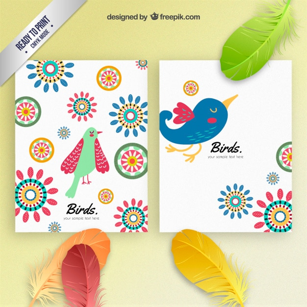 Colorful birds brochures