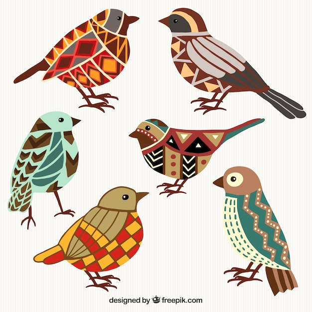 Colorful birds in geometric style