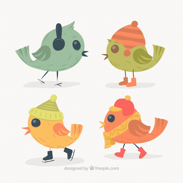 Colorful birds with winter accessories