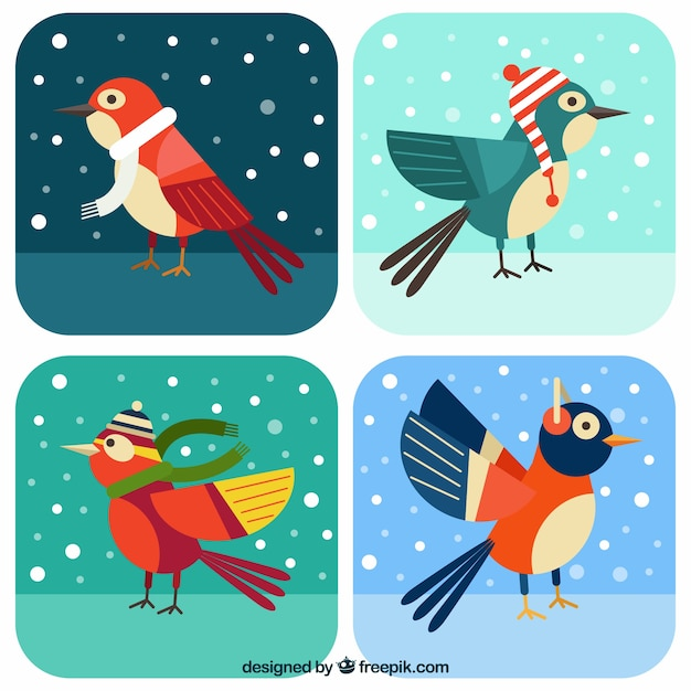 Colorful birds with winter elements in flat\ design