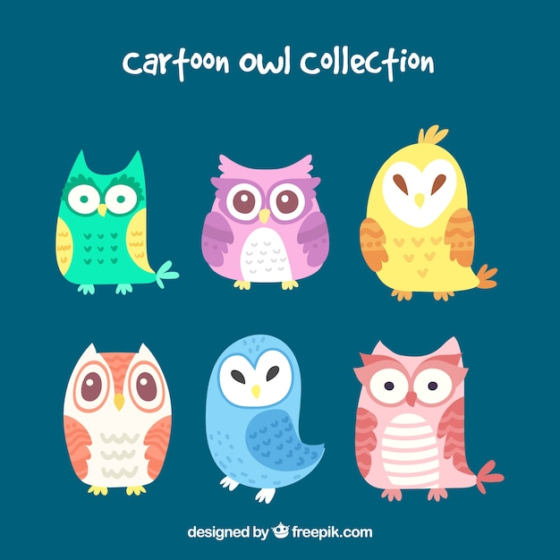 Colorful cartoon owl collection