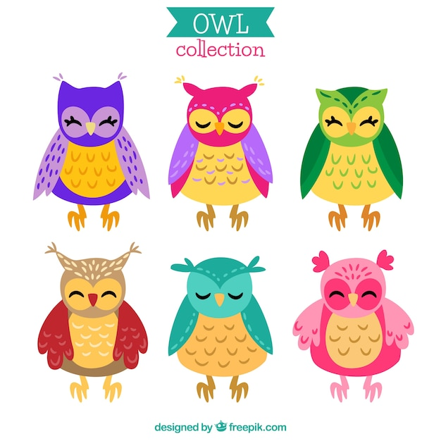 Colorful cartoon owl pack