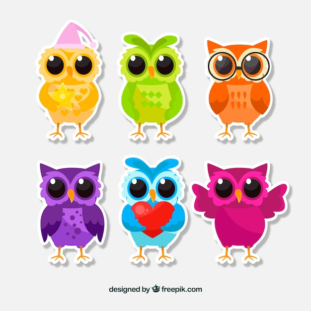 Colorful cartoon owl set