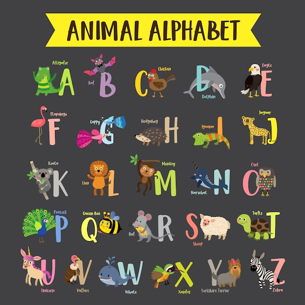 Colorful children zoo a-z alphabet Premium Vector