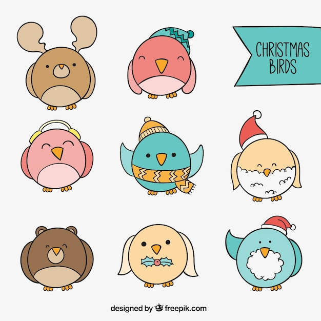 Colorful Christmas Birds Icon Collection