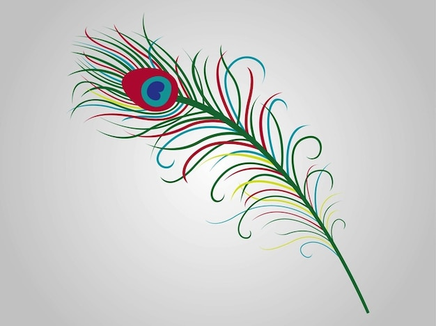Colorful feather Free Vector