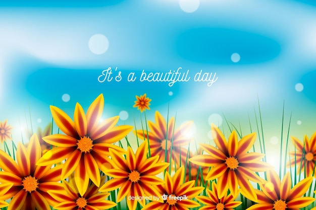 Colorful flowers background with inspirational quote Free Vector