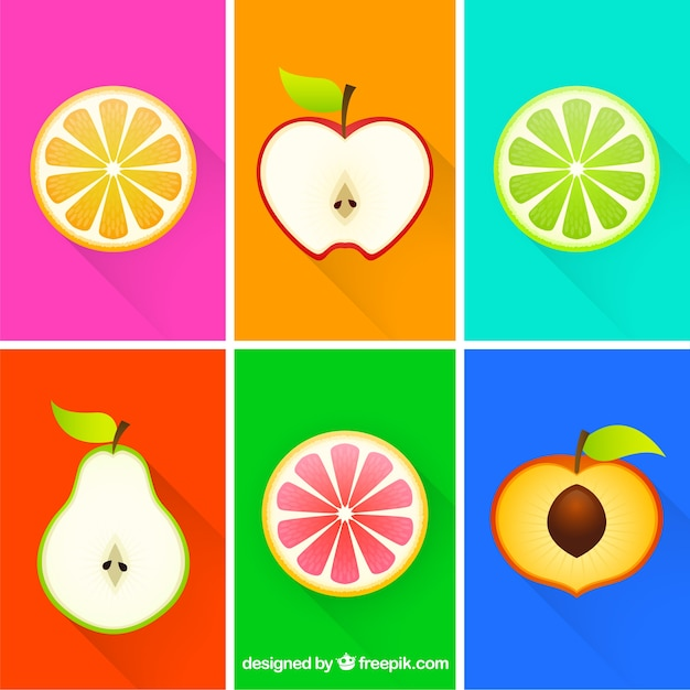 Colorful fruit slices Free Vector