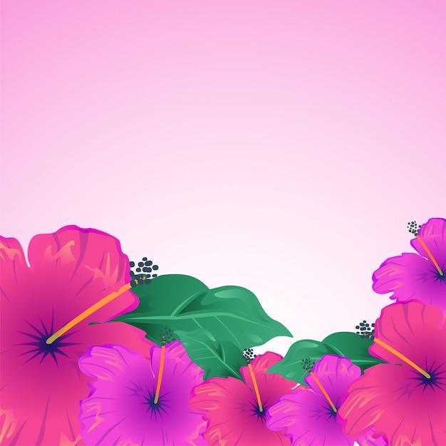 Colorful Hibiscus Flowers Vector Premium Download