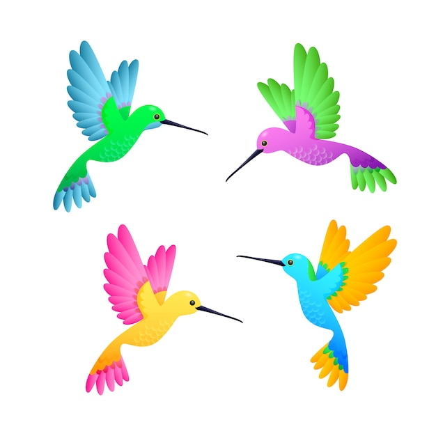 Colorful hummingbird set Free Vector