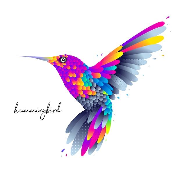 Colorful hummingbird Premium Vector