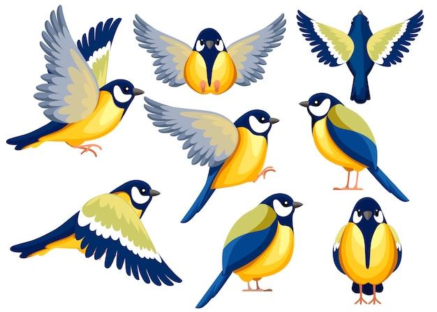 シジュウカラ鳥のカラフルなアイコンセット。キャラクター 。ビューの別の側面にある鳥のアイコン。かわいいシジュウカラでもテンプレート。白い背景のイラスト。 Premiumベクター