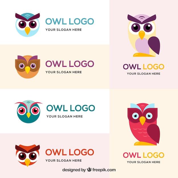 Colorful owl logo set Free Vector