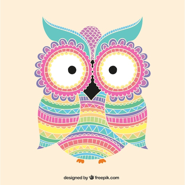 Image result for teaching owl