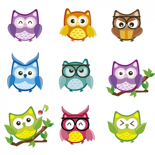 Colorful owls collection Free Vector