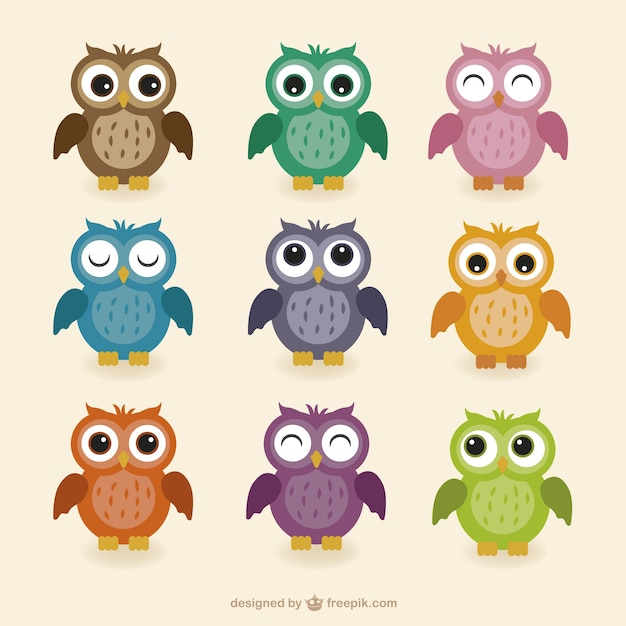 colorful cute owl vector - photo #5