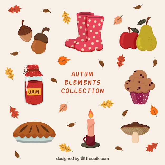 Colorful pack of autumnal elements Free Vector