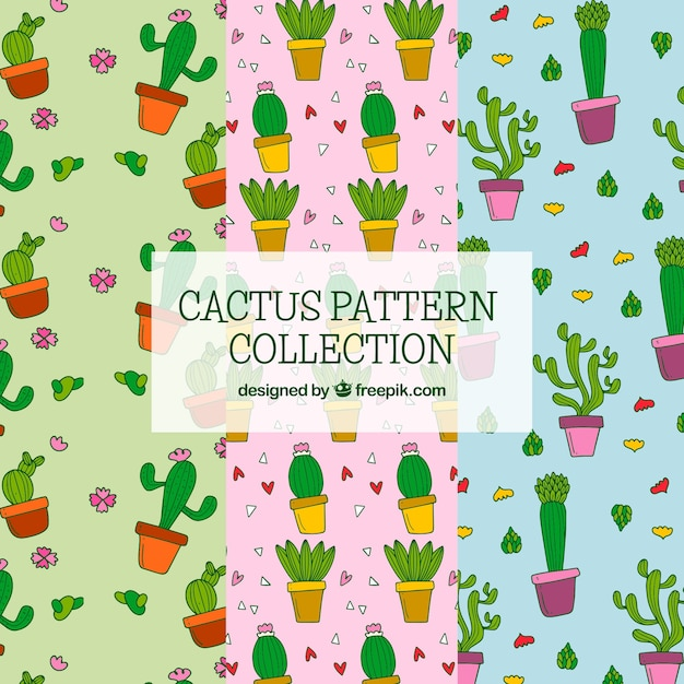 Colorful pack of funny cactus patterns