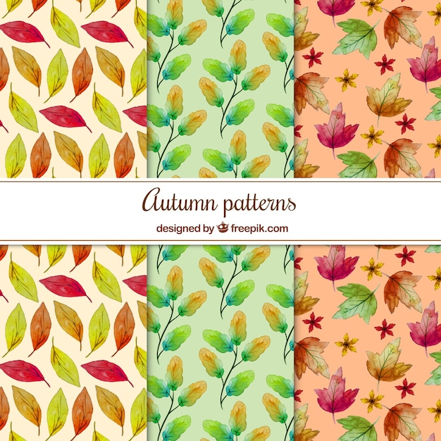 Colorful patterns with watercolor autumnal leaves