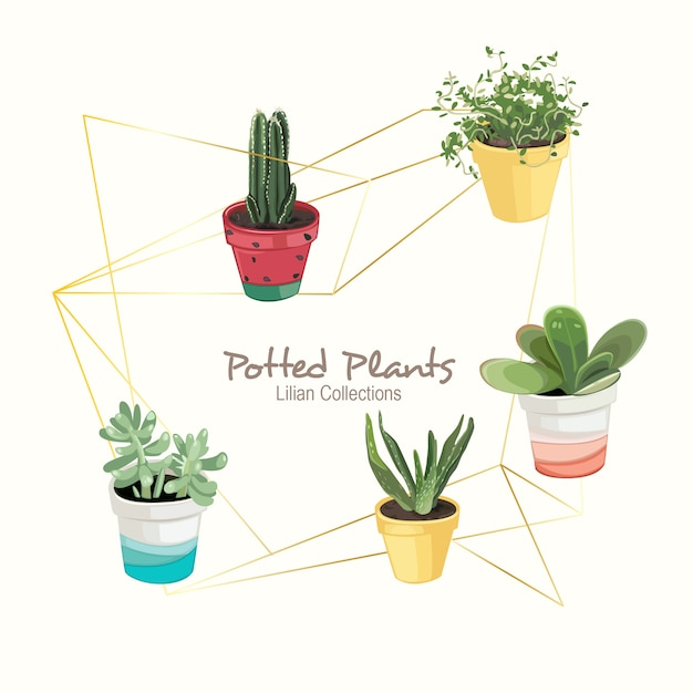 Colorful potted plants Premium Vector