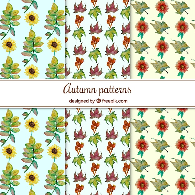Colorful set of watercolor autumn patterns