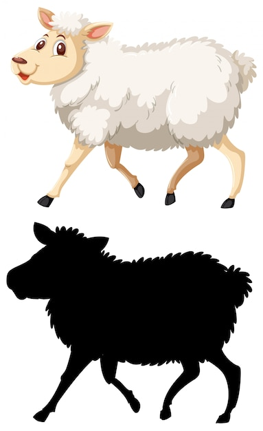 Colorful And Silhoutte Sheep Premium Vector