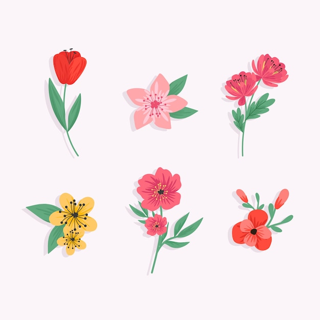 Colorful spring flower collection Free Vector