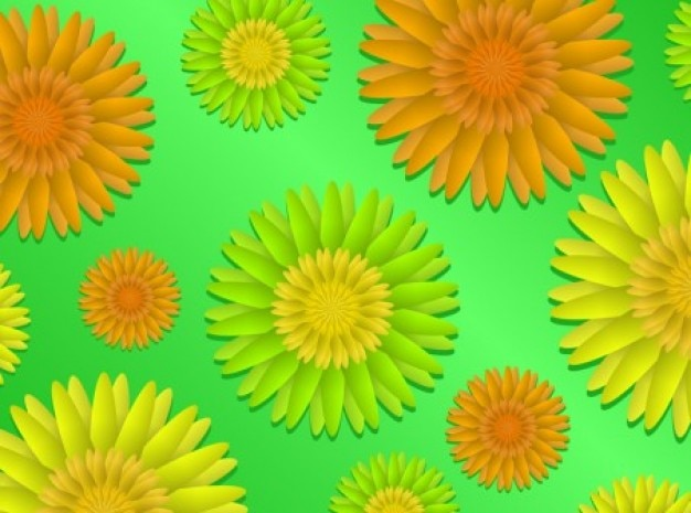 Colorful sunflowers on green background