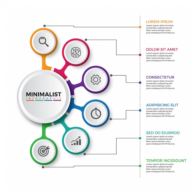 Colorful timeline infographics design Premium Vector