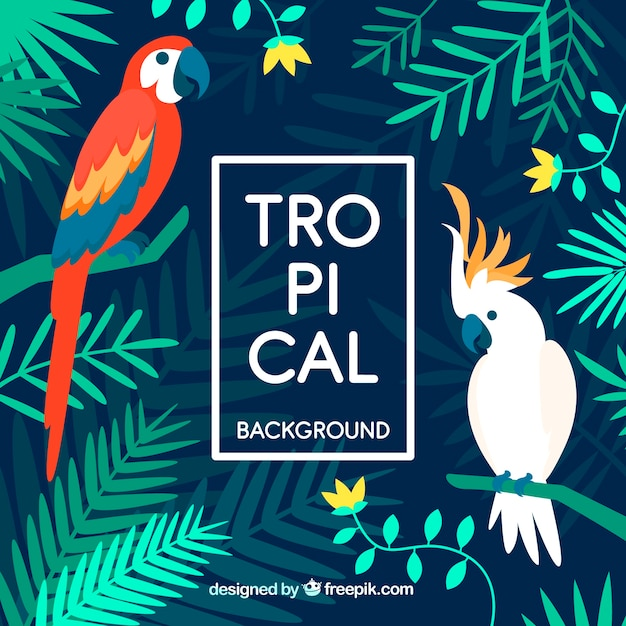 Colorful tropical background with flat design Free Vector
