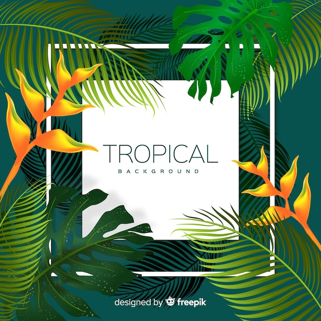 Colorful tropical background with leaves and frame Free Vector