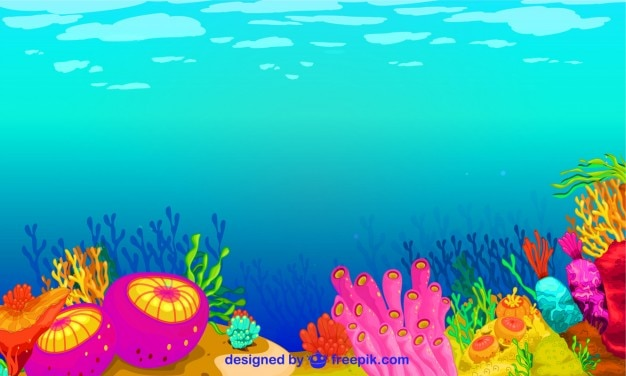 Neptune's world is a colorful kingdom (34 photos) CLICK ... |Colorful Underwater Life