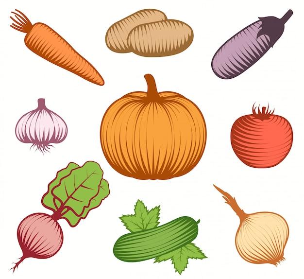 Декоративный набор красочных овощей Бесплатные векторы