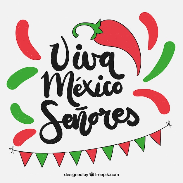 Colorful viva mexico background Free Vector