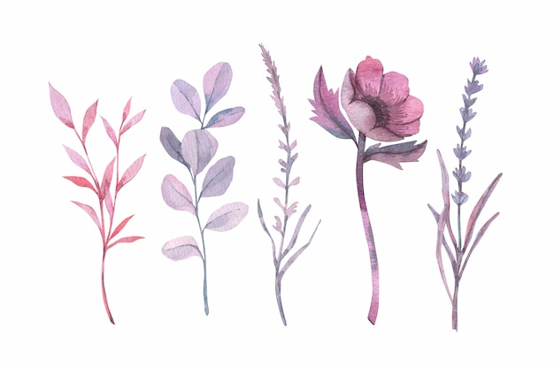 Colorful watercolor flowers Free Vector