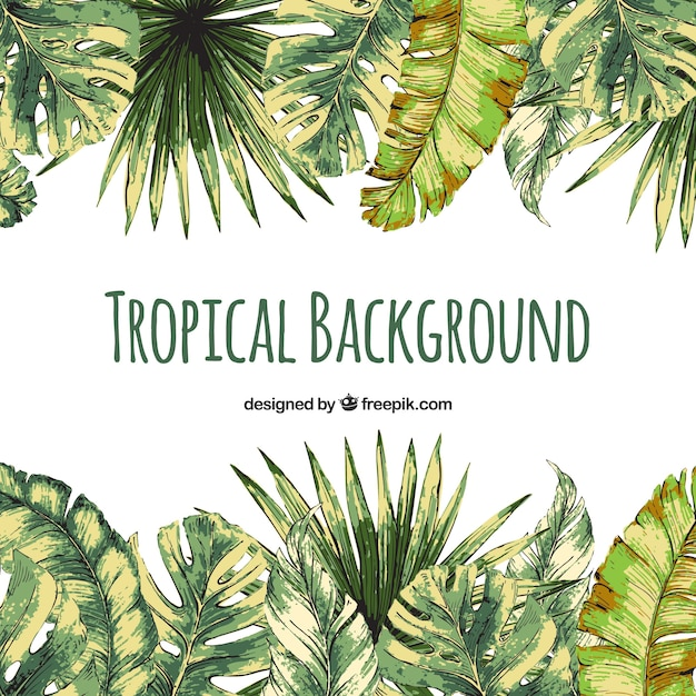 Colorful watercolor tropical background Free Vector