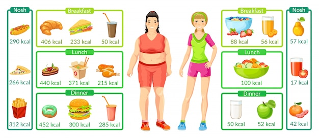 Colorful weight loss infographics Free Vector