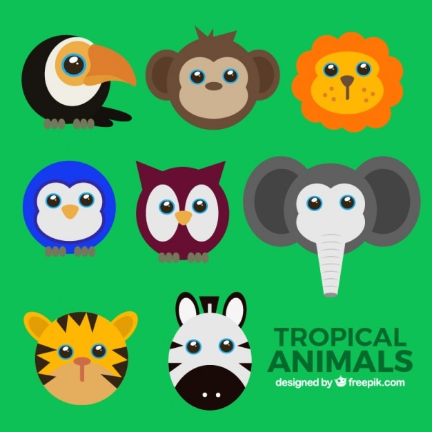 Colorful wild animal avatars set