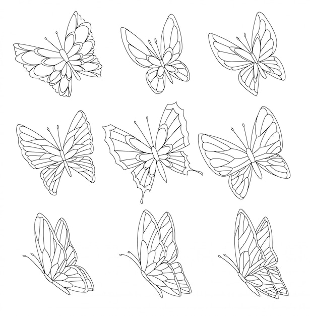 Coloring book page of butterflies isolated on white Premium Vector