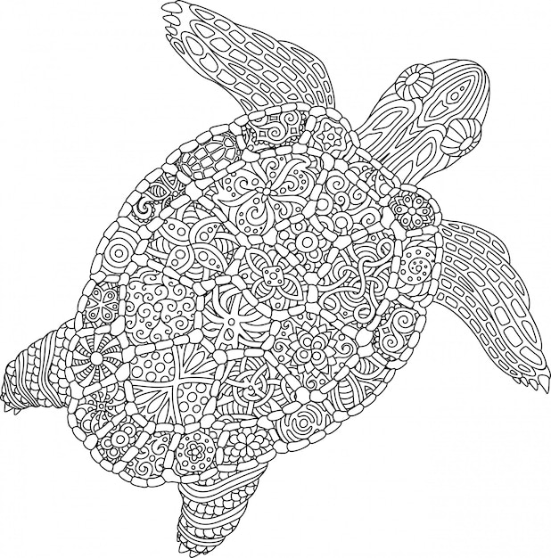 Coloring book page with turtle on white background Vector ...