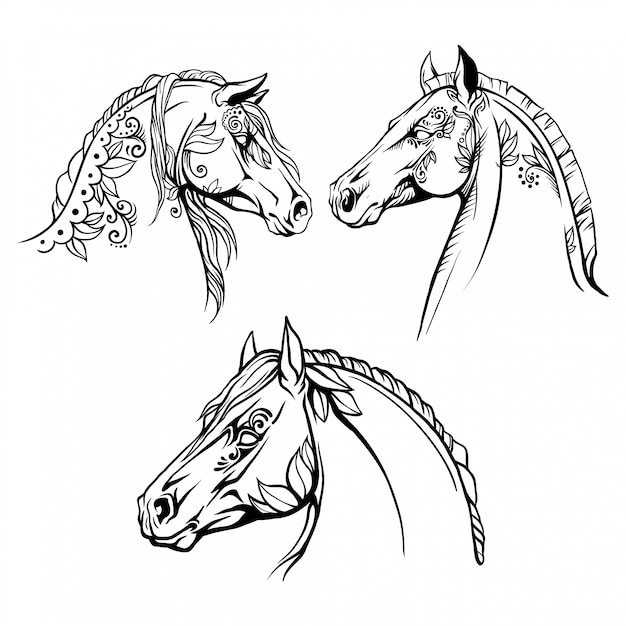 Coloring page 3 portraits of horses Premium Vector