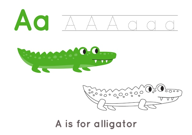 Premium Vector Coloring Page With Cute Cartoon Alligator. Alphabet  Tracing Worksheet With Letter A. Handwriting Practice For Kids.