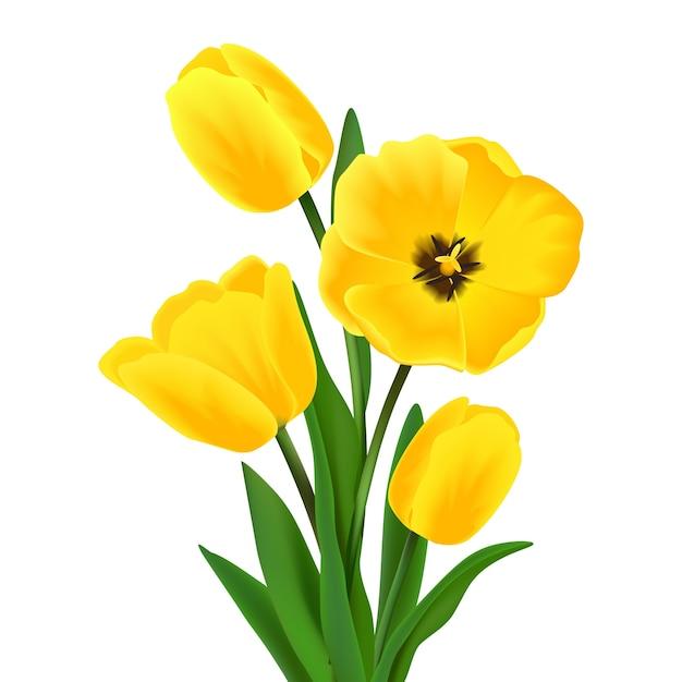coloured flower design vector free download new years clipart free new years clipart png