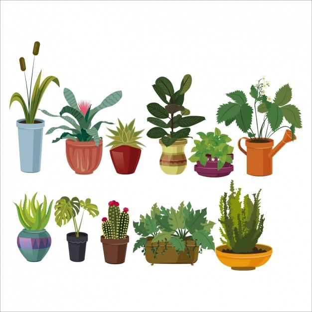 Coloured flowerpots collection Free Vector