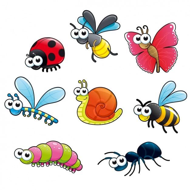 Коллекция цветное насекомых Бесплатные векторы