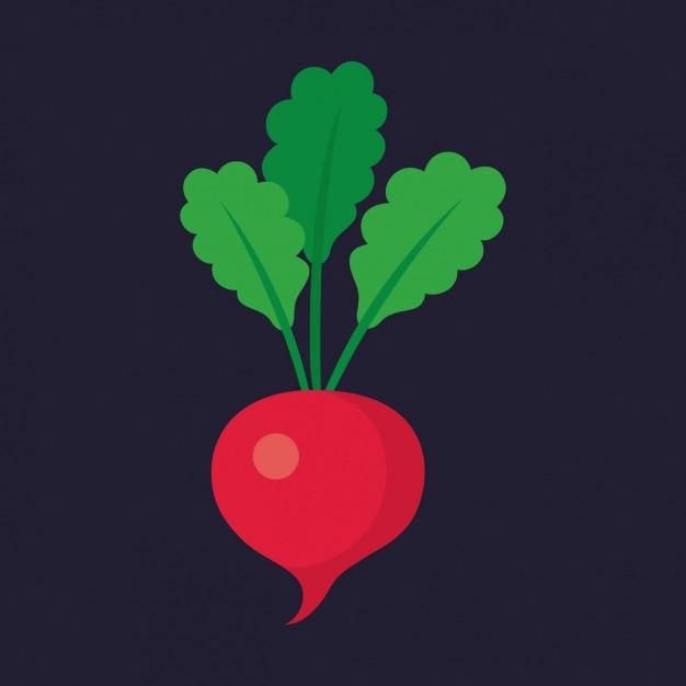 Coloured radish design Free Vector